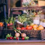 秋まき玉ねぎの種まき栽培、プランターを使った初心者でもできる育て方