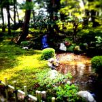 兼六園のライトアップ2015年度!無料開放日はコレ!