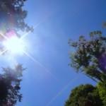 日焼けは放置せず美白ケアで日焼け肌や水ぶくれを防止しよう!