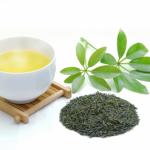 会社で使える美味しいお茶の入れ方とは?何かコツはある?